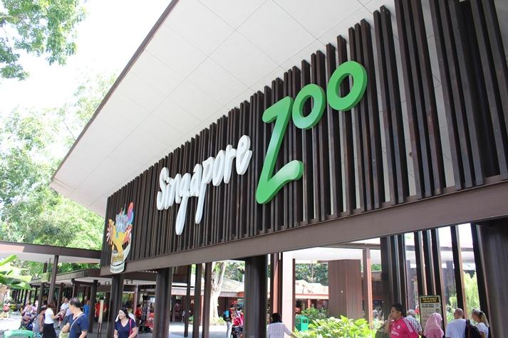 Der berühmte Singapur-Zoo