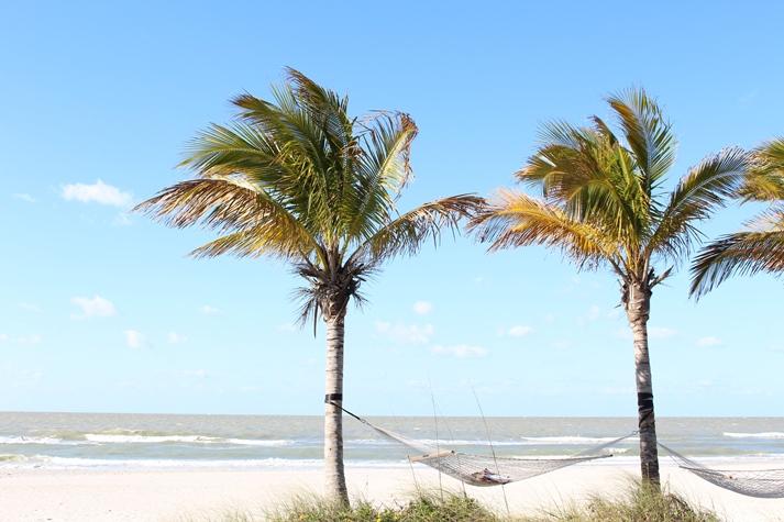 Nicht weit weg von Tampa: die schönsten Strände Floridas.