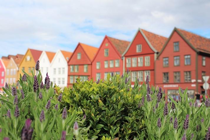 Die Kontorhäuser in Bryggen